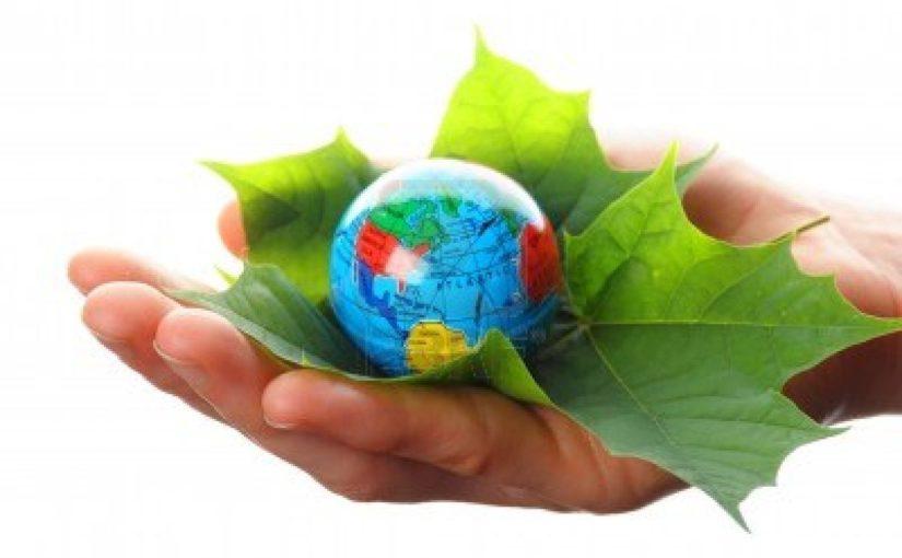 Tư vấn môi trường- Những điều cần biết