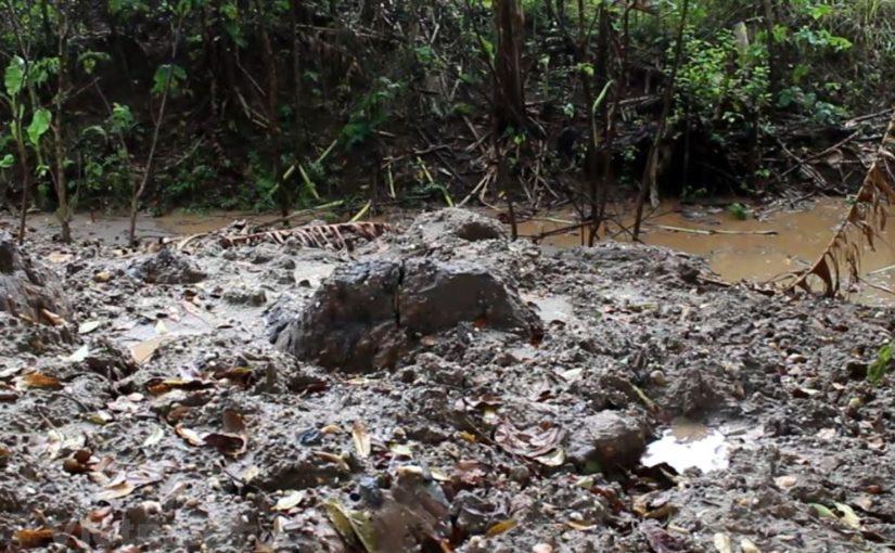Công ty xử lý bùn thải độc hại